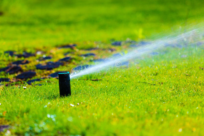 gardening Rasenberieselungsanlagen-Sprühwasser über Gras stockfotografie