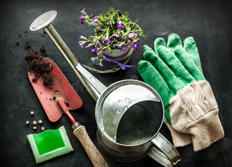 Gardening tools on on black chalkboard - spring royalty free stock images