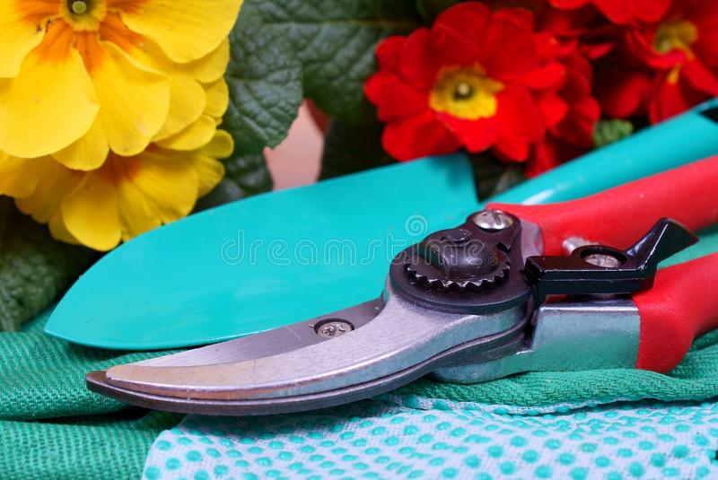 Gardening tools with flowers - detail stock photos