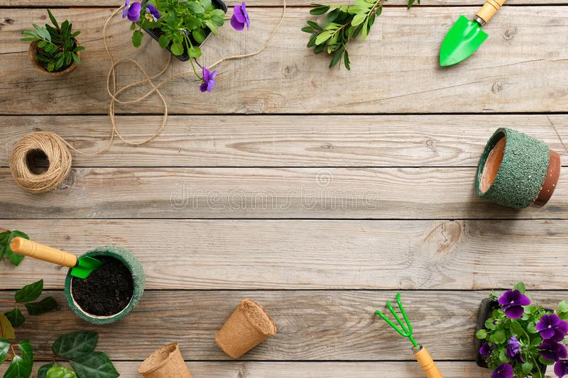 Gardening tools, flowers, plants and soil on vintage wooden table. Spring in the garden concept background with copy space for royalty free stock photography