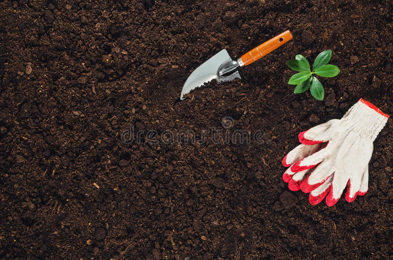 Gardening tools on garden soil texture background top view royalty free stock image