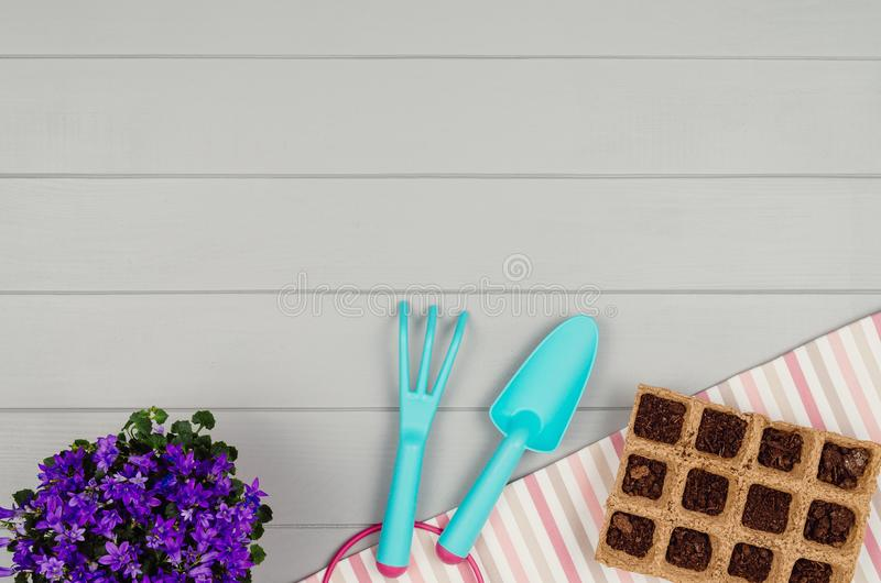 Gardening tools on gray wooden table background top view royalty free stock image