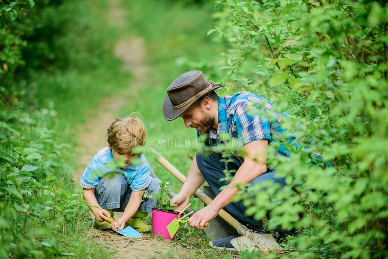 Gardening tools. Gardening hobby. Dad teaching little son care plants. Spring gardening routine. Planting flowers. Little helper in garden. Farm family. Little stock photo