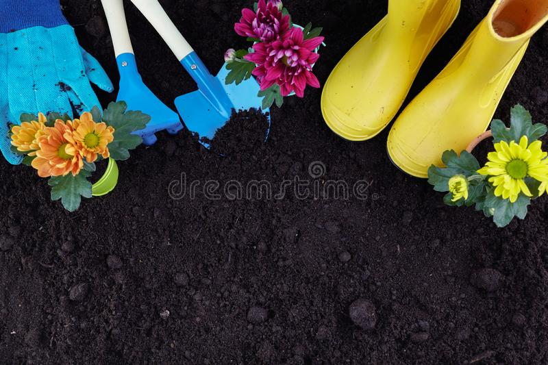 Gardening Tools and Plants on Soil Background. Garden Works Concept. Top view. royalty free stock photography