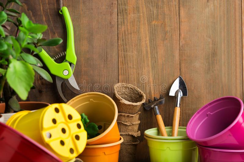 Gardening tools for seeding and home garden on brown wooden wall stock photo