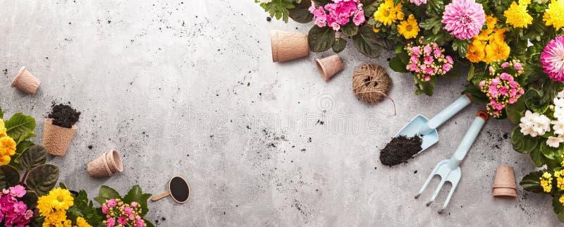 Gardening Tools on Shale Background royalty free stock photo