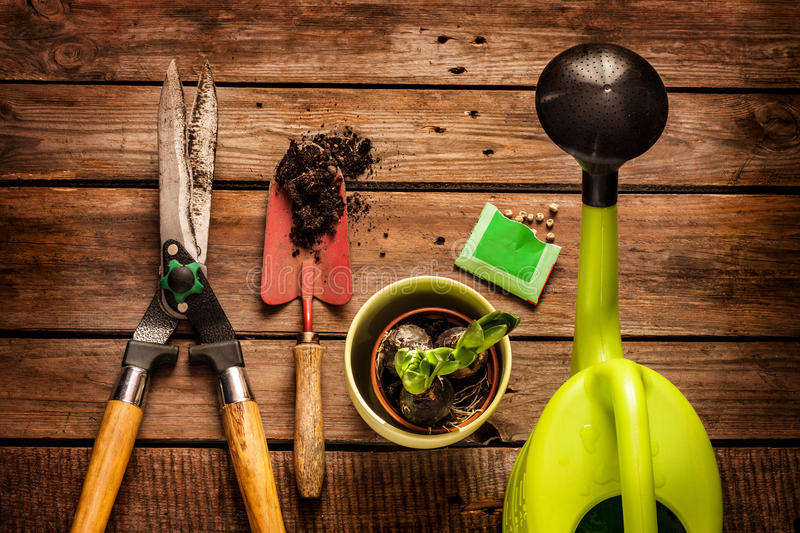 Gardening tools on vintage wooden table - spring stock photo