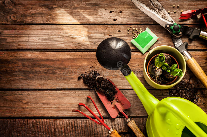 Gardening tools on vintage wooden table - spring stock photography