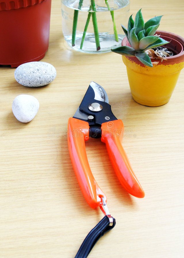 Download Gardening Tools Wood Table Royalty Free Stock Photography - Image: 5923117