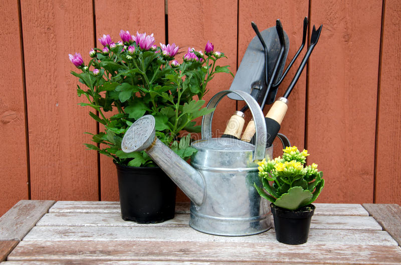 Gardening tools. stock photography