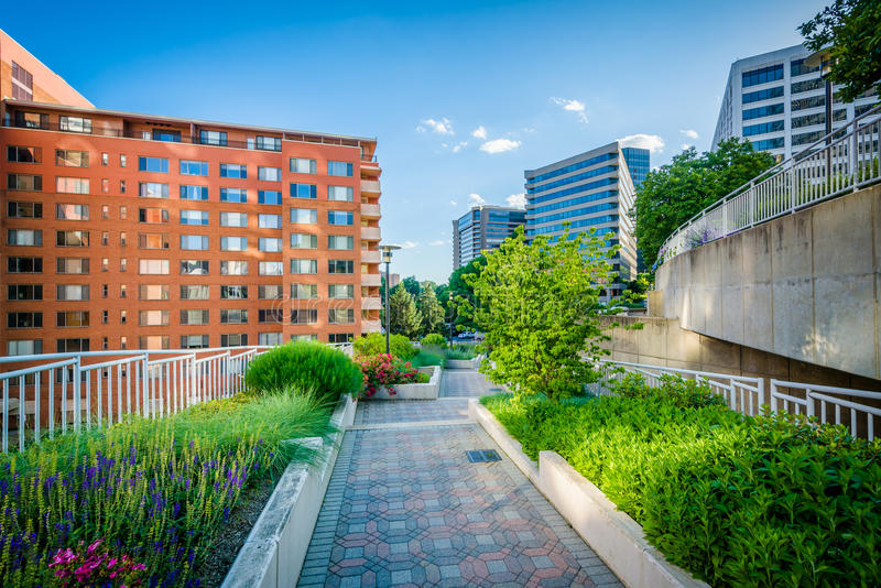 Gardens along a walkway at Freedom Park and modern buildings in royalty free stock photography