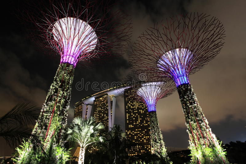 Gardens By The Bay Editorial Photography