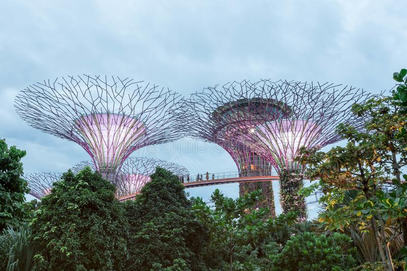 Gardens by the bay at night, Singapore, July 7 2019 royalty free stock photography
