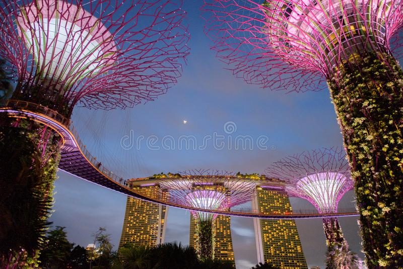 Gardens by the Bay. Night view of the light tree show in Singapore. Singapore, 19, April, 2018 : Gardens by the Bay. Night view of the light tree show in royalty free stock image