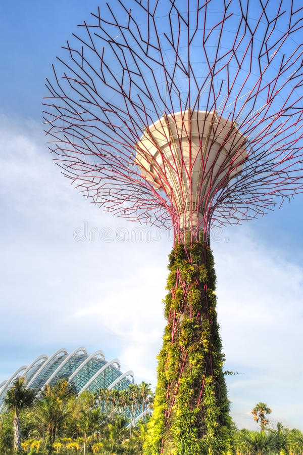 Free Gardens By The Bay, Singapore Stock Image - 26855561