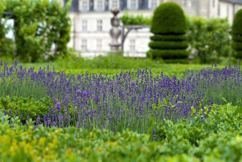 Gardens and Chateau de Villandry royalty free stock photos