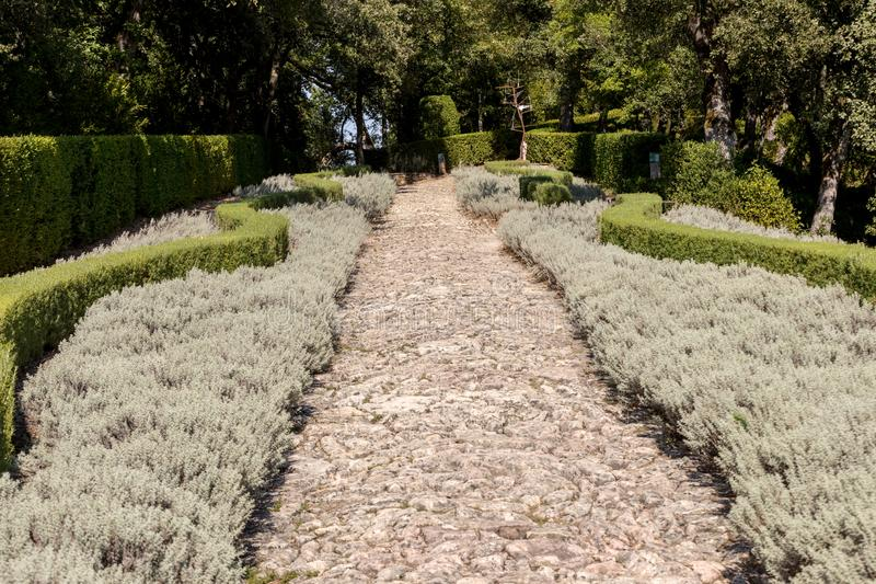 The gardens of the Jardins de Marqueyssac in the Dordogne region of France.  royalty free stock photo