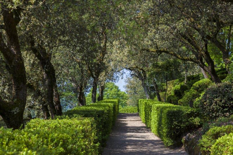 Gardens of Marqueyssac, Vezac. Dordogne, Nouevelle Aquitaine, France royalty free stock image