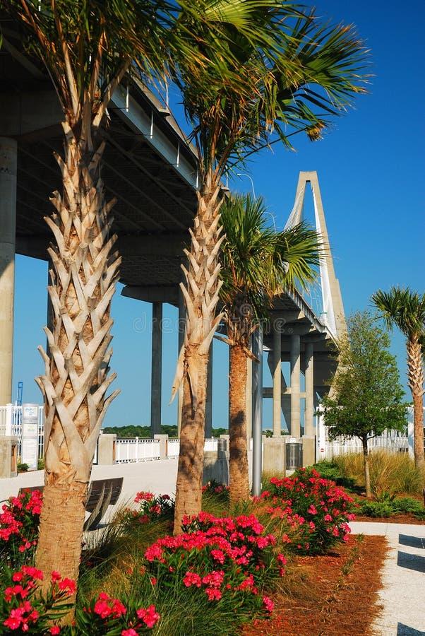 The gardens of Mt Pleasant Pier Park Ravenel Bridge, Charleston, SC. Mt Pleasant Pier Park offers a wonderful videw of the modern Ravenel Bridge in Charleston royalty free stock images
