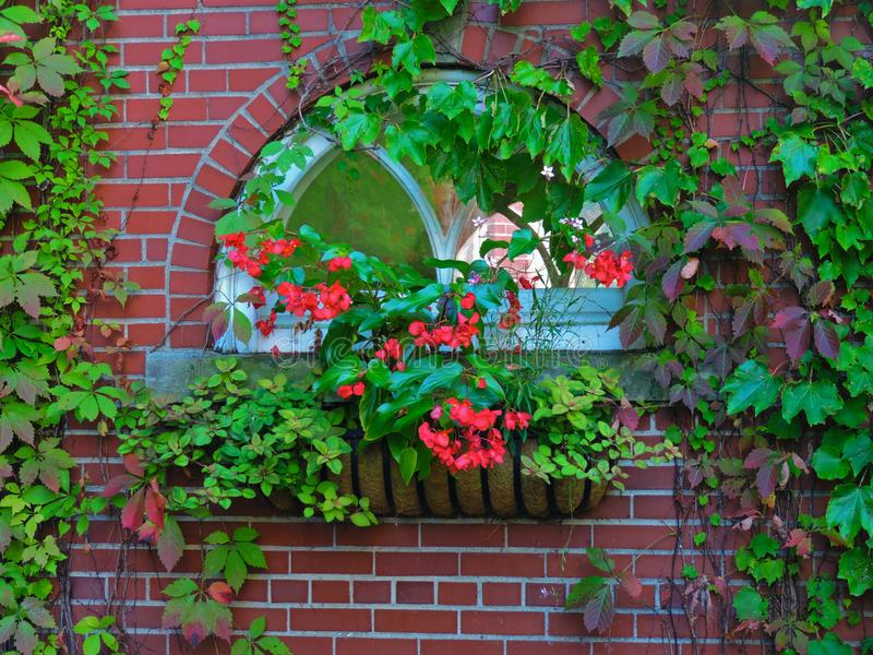 Window of Time royalty free stock photography