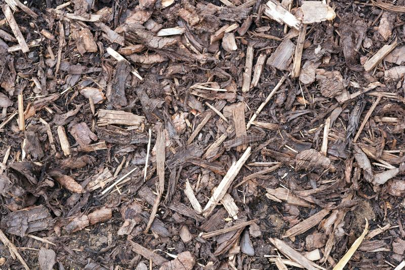 Gardens texture - landscaping bark chippings. Garden landscaping shredded bark full frame texture closeup royalty free stock photos