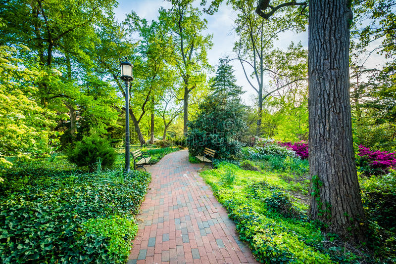 Gardens and trees along a walkway at Johns Hopkins University, i. N Baltimore, Maryland stock photography