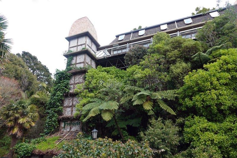 Gardentreehouse botánico de Wellington, Nueva Zelanda imagenes de archivo
