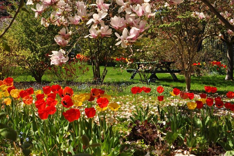Gardesn variopinto con i fiori immagine stock libera da diritti