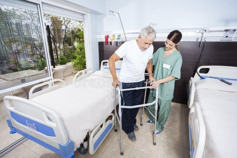 Gardien aidant le patient supérieur avec le marcheur photographie stock libre de droits