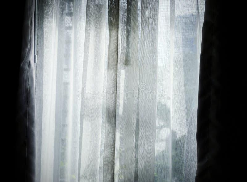 Gardin med solljus i vardagsrummet royaltyfria bilder