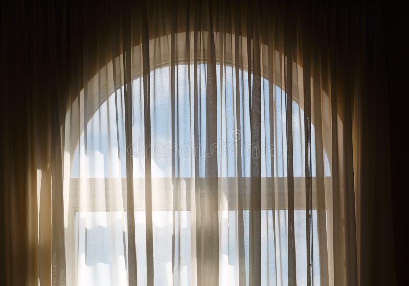Gardin på fönstret royaltyfria bilder