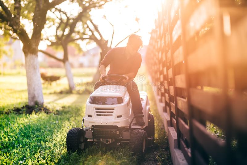 Gardner riding lawnmower and cutting grass during sunset golden hour. Details of gardening with sunrays royalty free stock image