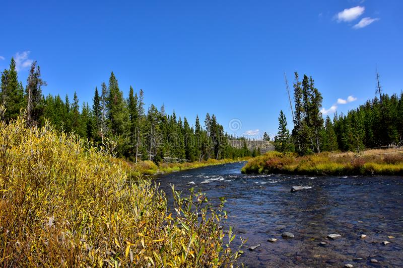 Gardner River en parc national de Yellowstone image libre de droits