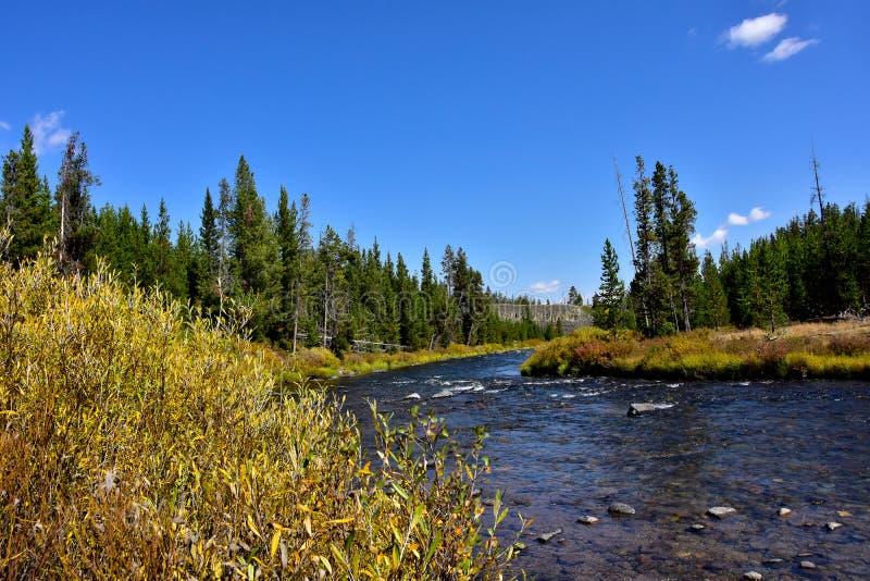 Gardner rzeka w Yellowstone parku narodowym obraz royalty free