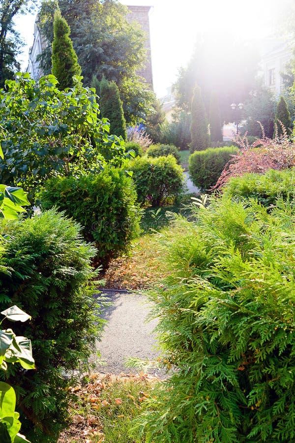 Garez avec de beaux avenues, parterres et arbustes photographie stock
