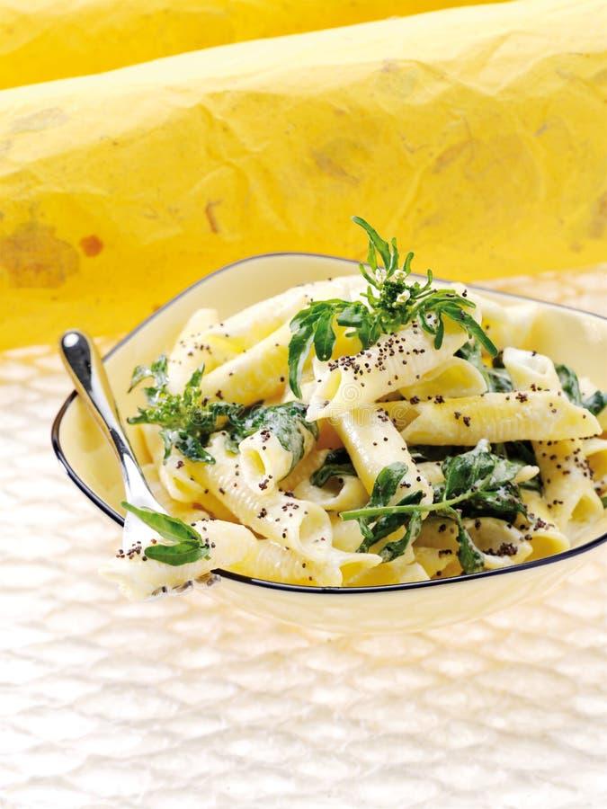Garganelli Pasta With Crescione Stock Images