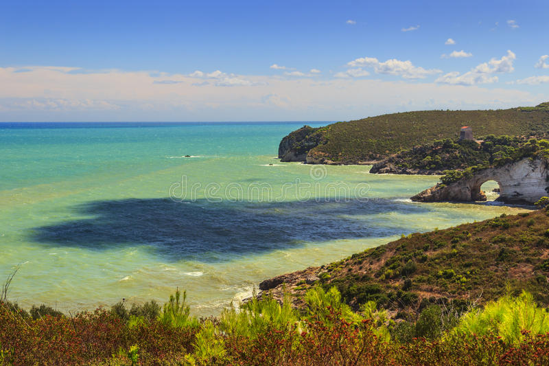 Gargano kust: San Felice Bay Architello, Italien Gargano nationalpark royaltyfri bild