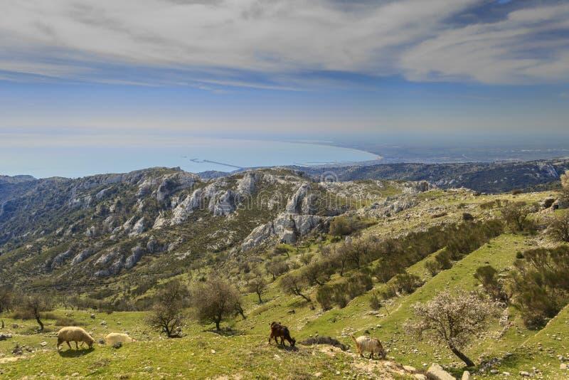 Gargano udde: panoramautsikt fr?n Monte Sant ` Angelo E arkivbilder