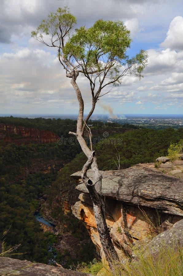 Garganta Australia de Glenbrook imágenes de archivo libres de regalías