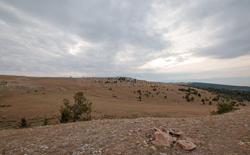 Garganta/bacia da xícara de chá em Sykes Ridge nas montanhas na fronteira estadual de Wyoming Montana - EUA de Pryor fotos de stock royalty free