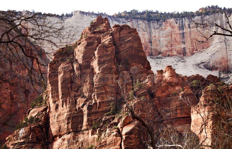 Garganta branca Utá de Zion do trono das rochas vermelhas grande fotos de stock royalty free