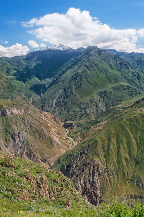 Garganta Colca, Peru imagem de stock royalty free