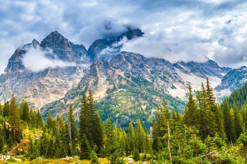 Garganta da cascata - parque nacional grande de Teton imagem de stock royalty free