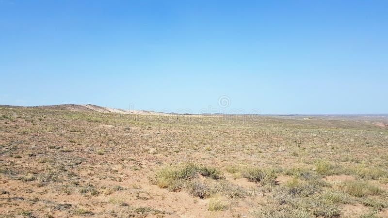 Garganta de Charyn em Kasachstan foto de stock