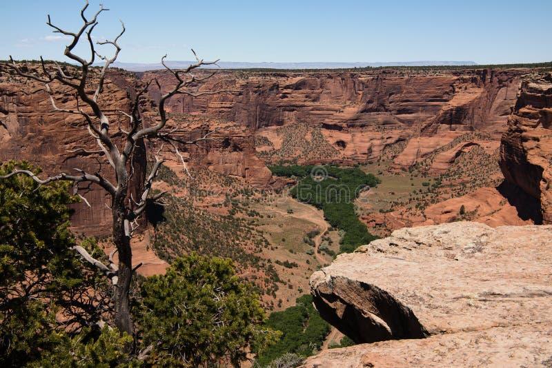 Garganta de Chelly, o Arizona fotos de stock royalty free