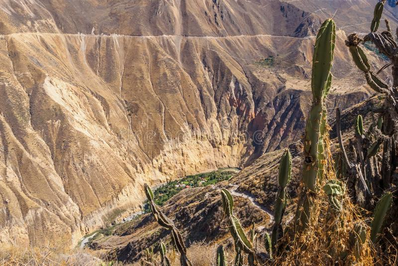 Garganta de Colca de Cabanaconde no Peru foto de stock