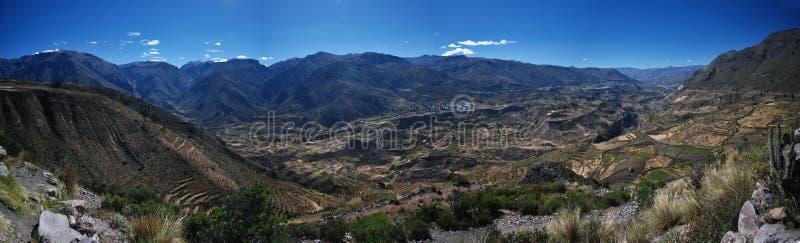 Garganta de Colca de Peru imagem de stock royalty free