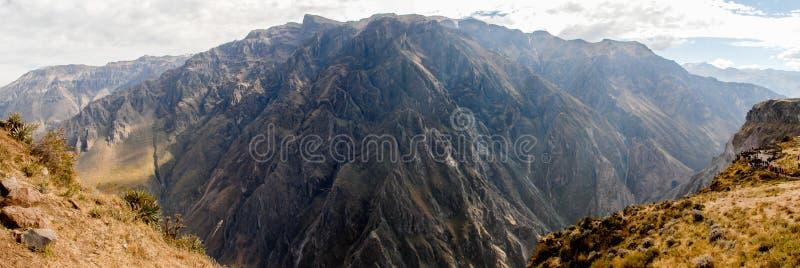 Garganta de Colca, Peru Panorama imagem de stock