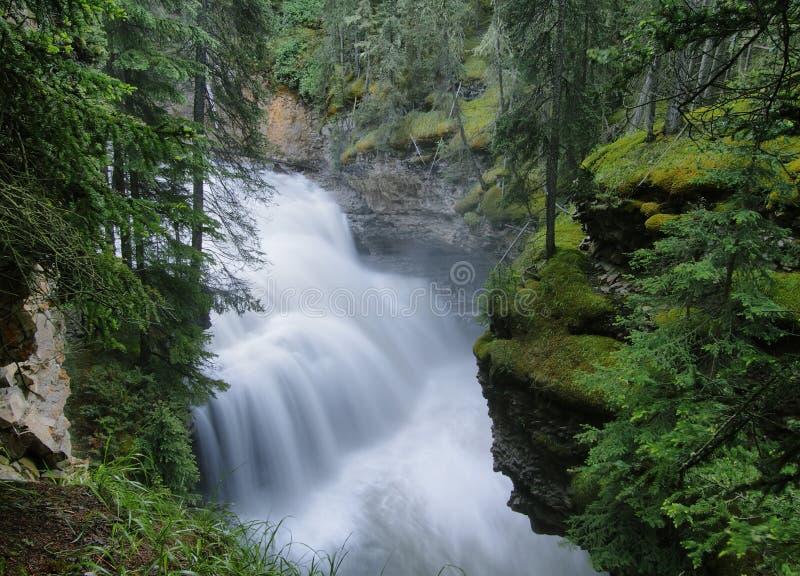 Garganta de Johnston, parque nacional de Banff foto de stock royalty free