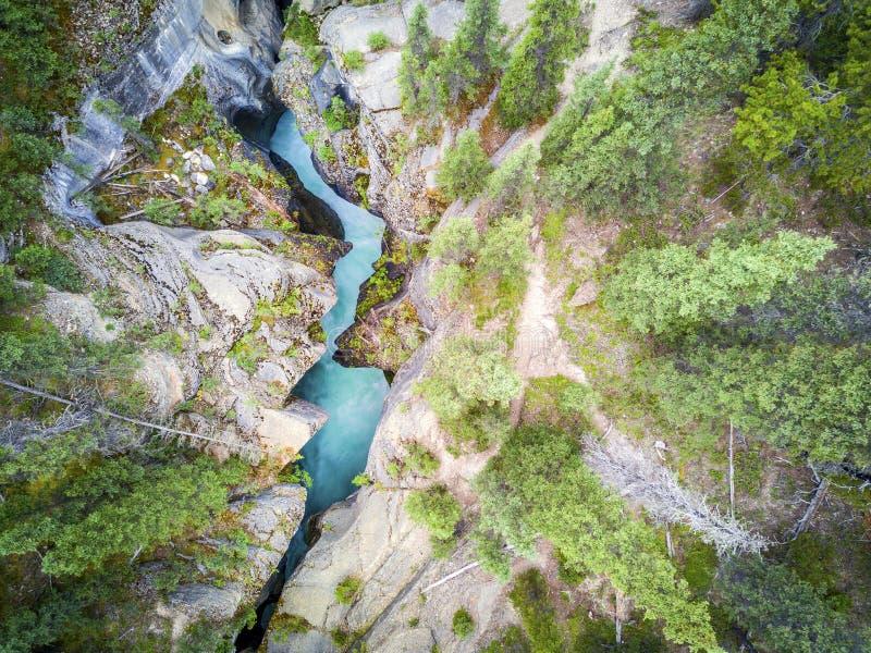 Garganta de surpresa de Mistaya com água azul rica, parque nacional de Banff fotos de stock
